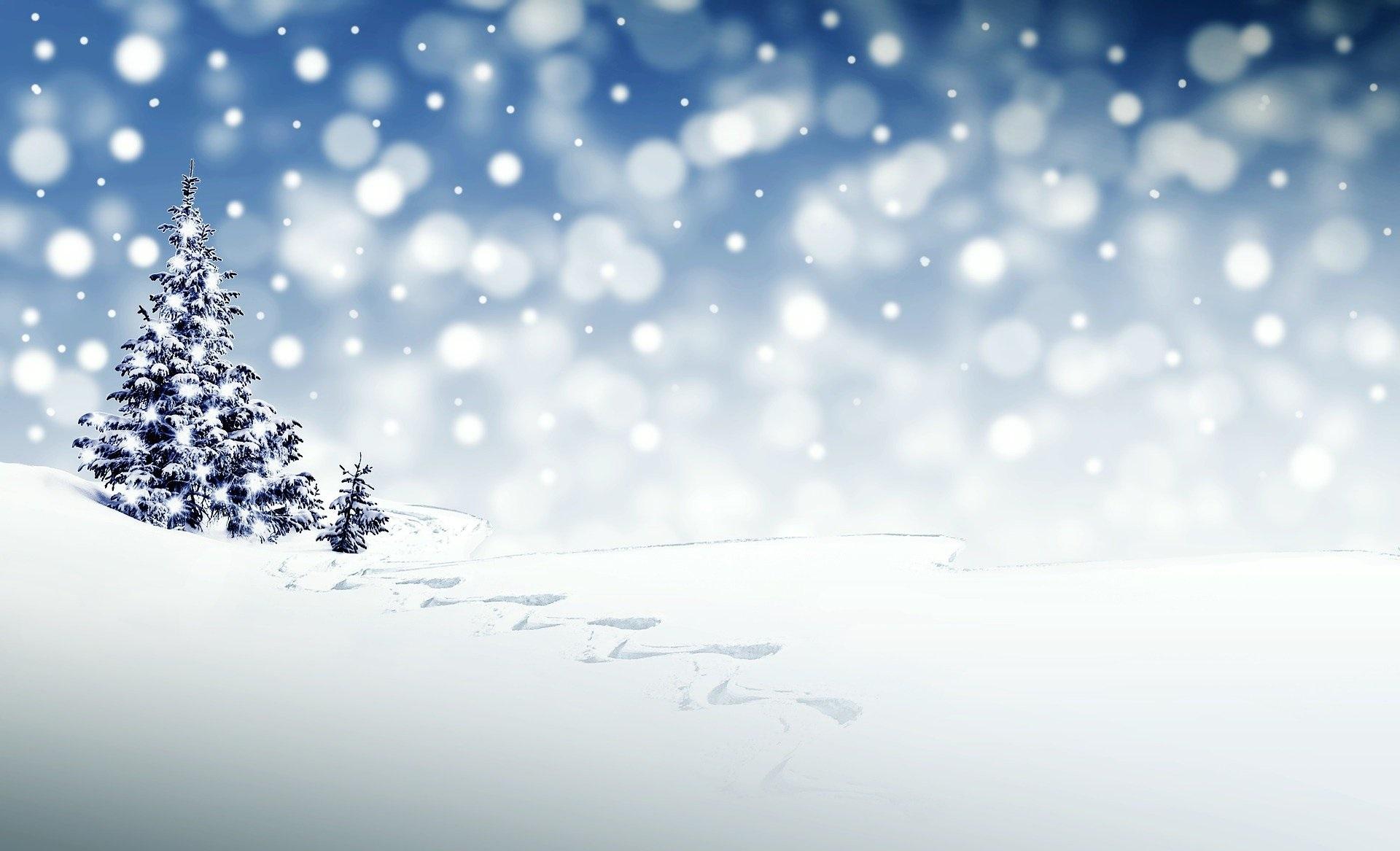 'Tis the season to be jolly…